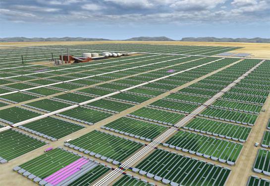 Мини установки для производства биодизеля