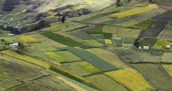 наследование земельного участка
