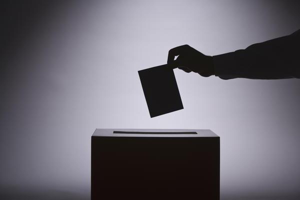 Формы и виды демократии