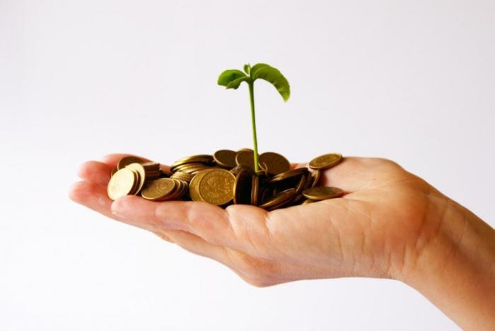 Грант на открытие фирмы частные перевозки бизнес план
