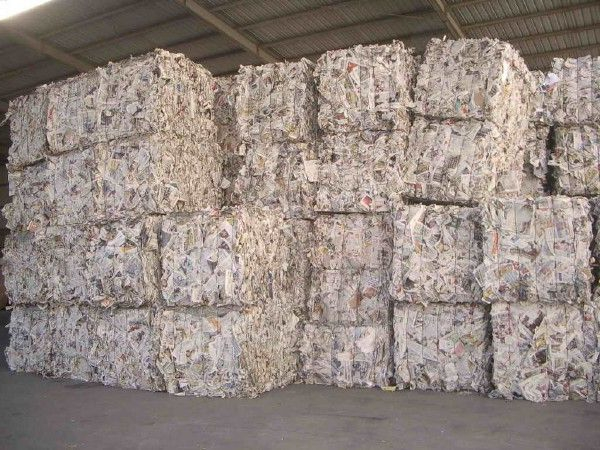 Сдать мусор на переработку за деньги