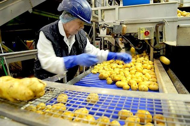 Свой бизнес: производство чипсов