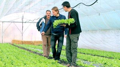 крестъянско фермерское хозяйство