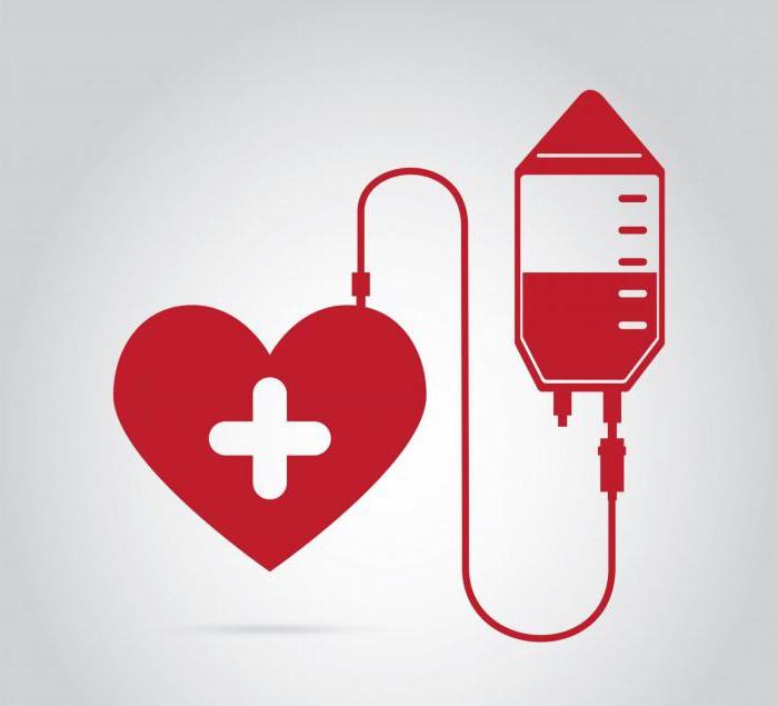 Сдача крови на донорство правила, подготовка, условия