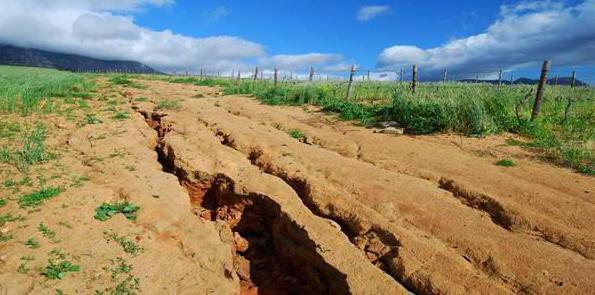 рекультивация нарушенных горными работами земель