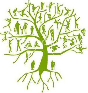 Близкие родственники по семейному кодексу РФ: кровное родство и члены семьи
