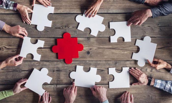 Договор коллективного страхования: виды, риски, плюсы и минусы