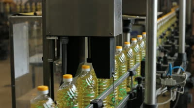 Свой бизнес: производство подсолнечного масла