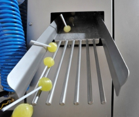 Изображение - Оборудование для производства леденцов 2353