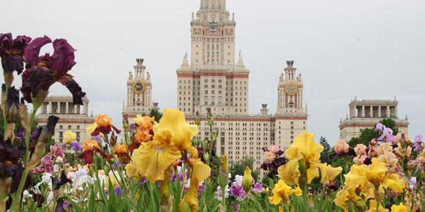 Роупджампинг в Москве открывает перед вами двери в неизвестность 81