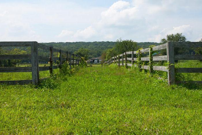 Документы для оформления согласия на продажу земельного участка