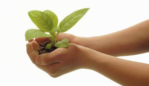 Комплексная оценка воздействия на окружающую среду