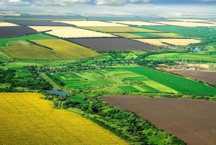 Купить сельхоз землю от 20 га в испании