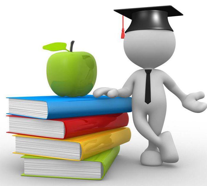 Платные образовательные услуги: организация, качество и правила предоставления