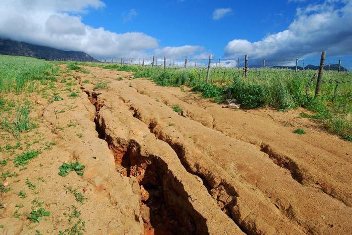 Условия и сроки консервации земель