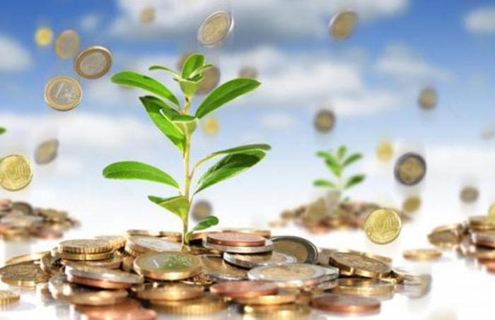 Капитальные вложения: оценка эффективности, структура, срок окупаемости