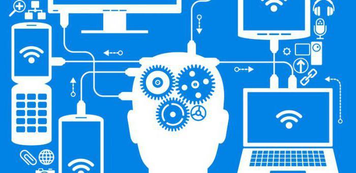 Что указывается в ДИ? Должностные обязанности программиста, его права и ответственность