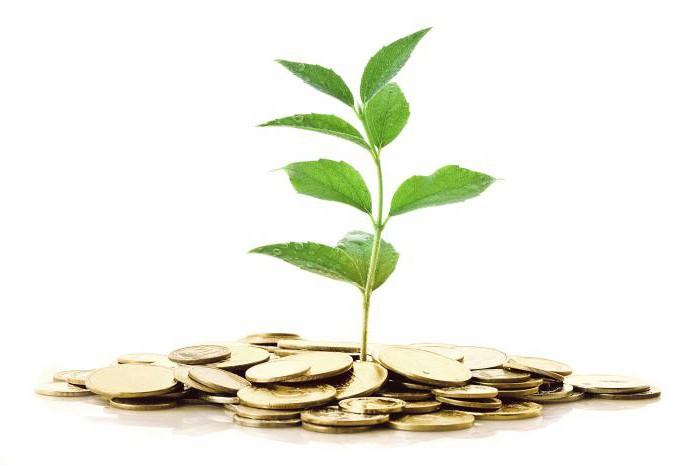 куда и как инвестировать деньги начинающему инвестору