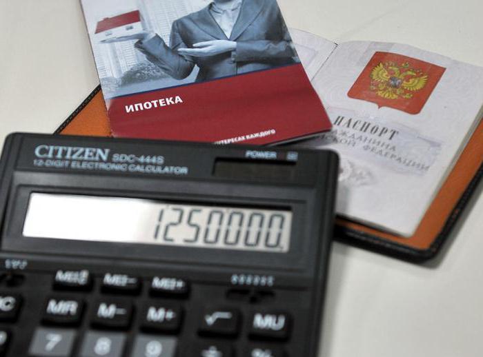 Возврат налога при покупке недвижимости в ипотеку: размер, условия, документы и отзывы