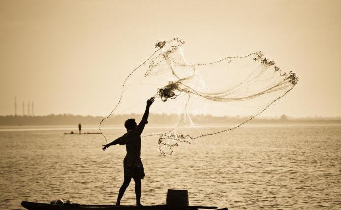Наказание и штраф за ловлю рыбы сетями: закон, требования и правила