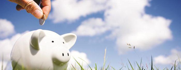 Как узнать накопительную часть пенсии: пошаговая инструкция