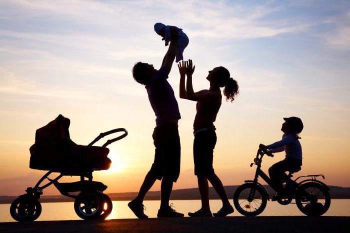 программа поддержки молодых семей