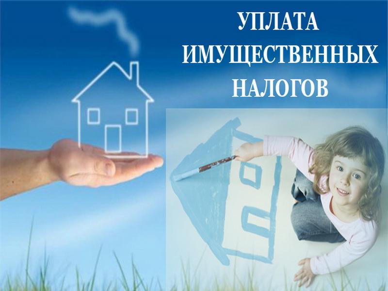 Должен ли ребенок платить налог на имущество: советы юриста