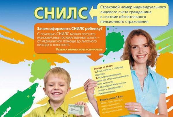 Смена страхового полиса при смене фамилии: документы, порядок и сроки