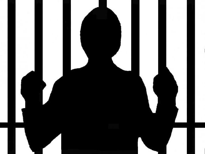 Специальный субъект преступления в уголовном праве: понятие, признаки и виды