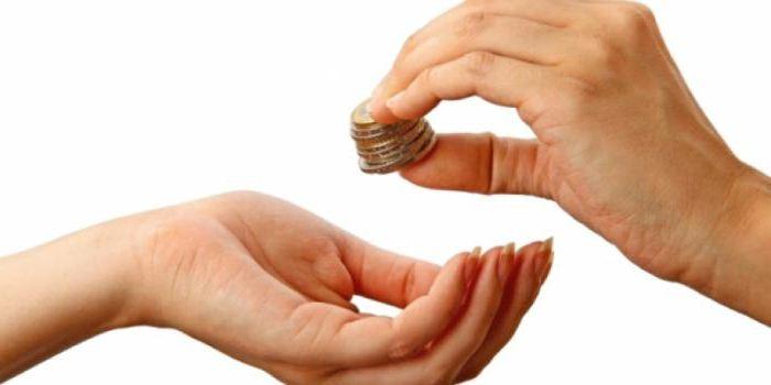 бюджетные субвенции