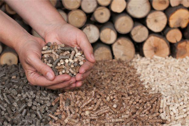 Структура, состав и перспективы развития лесопромышленного комплекса России