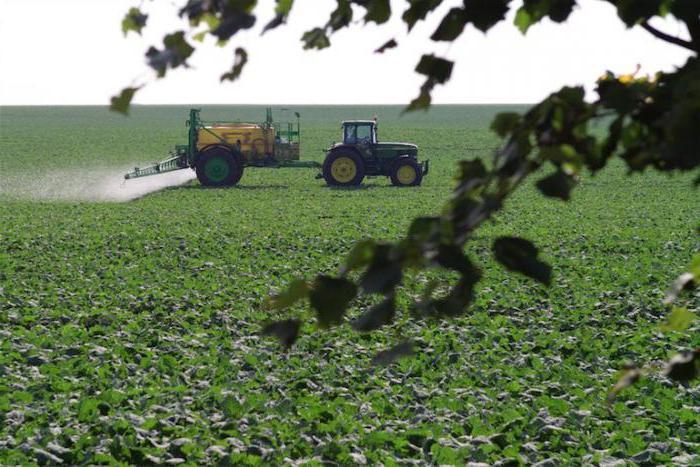 Класс опасности химических веществ: перечень, использование и общее токсическое воздействие