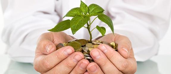 субъектами инвестиционной деятельности являются