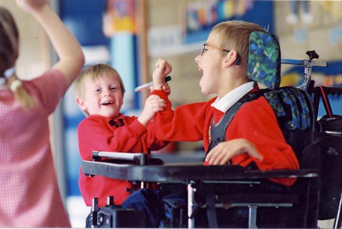 Какие льготы имеет инвалид 1 группы? Федеральный закон О социальной защите инвалидов в Российской Федерации