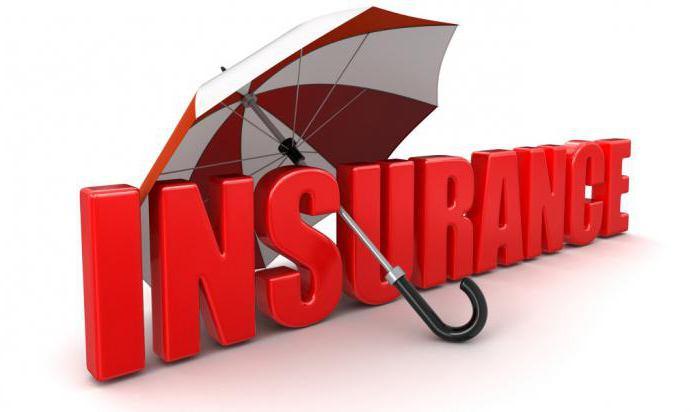 Страховой полис: понятие, условия, договор