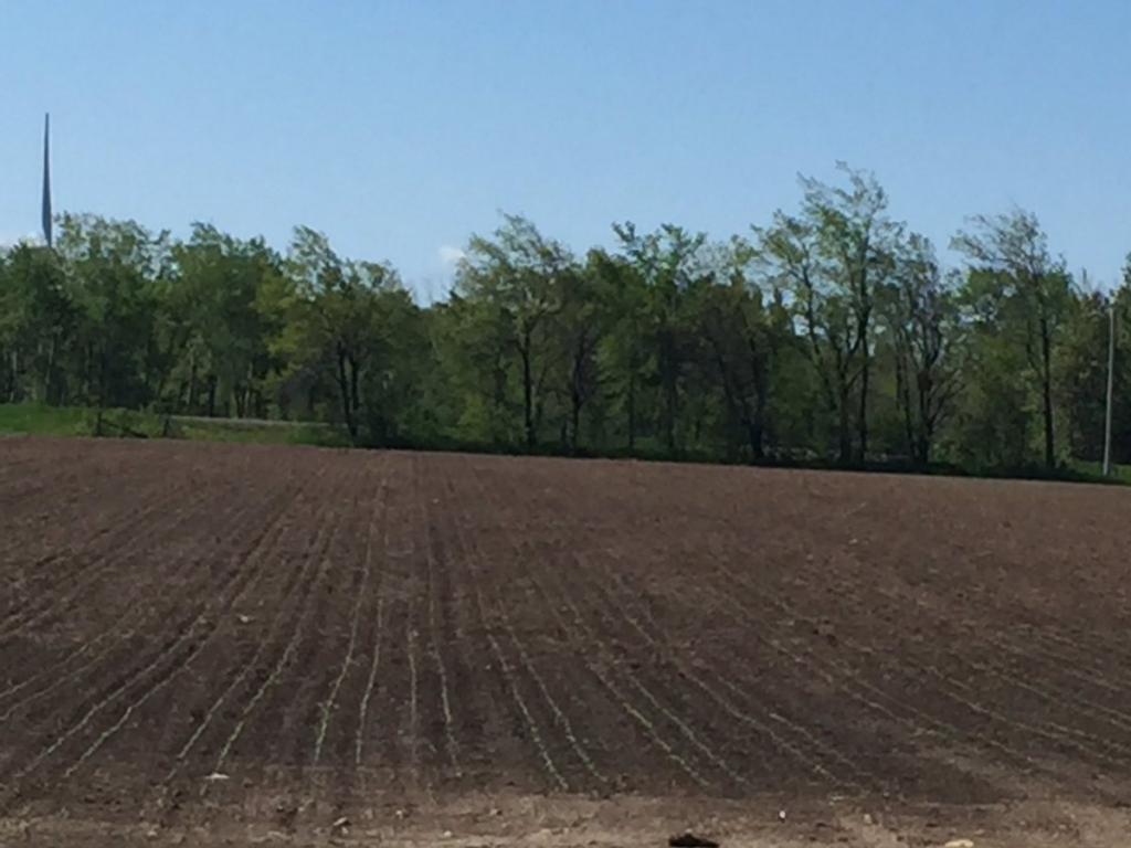 Образование многоконтурного земельного участка