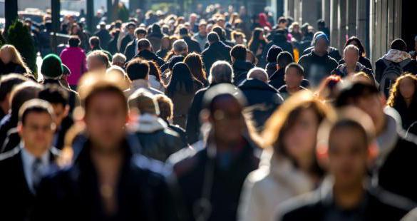 Что такое социальная структура: понятие, основные элементы