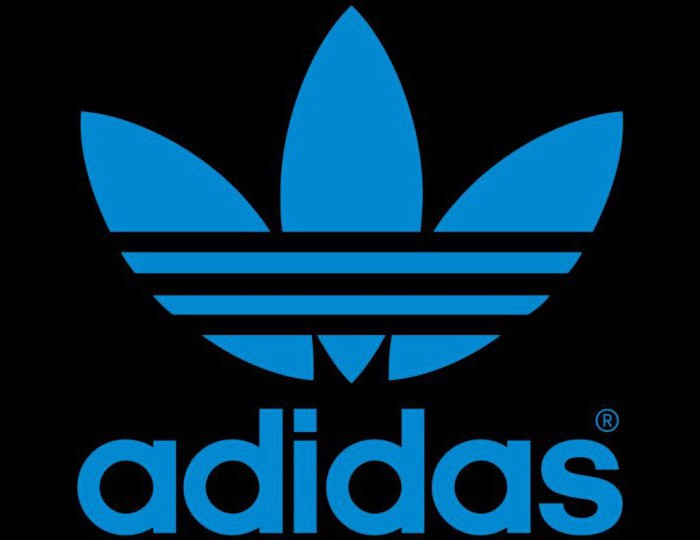 a1a2590165d Популярные бренды спортивной одежды. Список лучших производителей ...