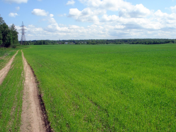 перевод земель сельхозназначения в другую категорию