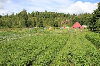 перевод сельскохозяйственных земель в другую категорию