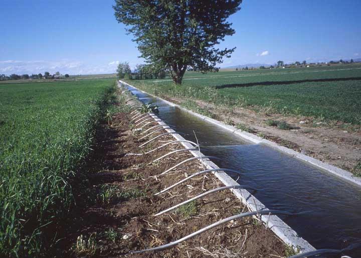 орошение земель в мелиорации статья
