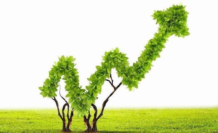 Понятие экономики, значение, развитие, проблемы