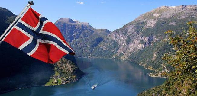 Средняя зарплата в Норвегии: размер, востребованные профессии и рекомендации