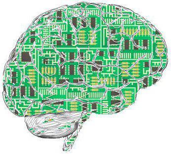 Виды и свойства информации