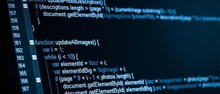 Средние зарплаты программистов в России, обязанности и должностная инструкция