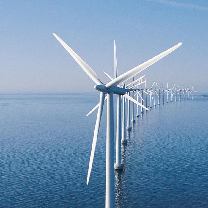 этом, ветряные электростанции нового поколения фото страшных ядовитых змей