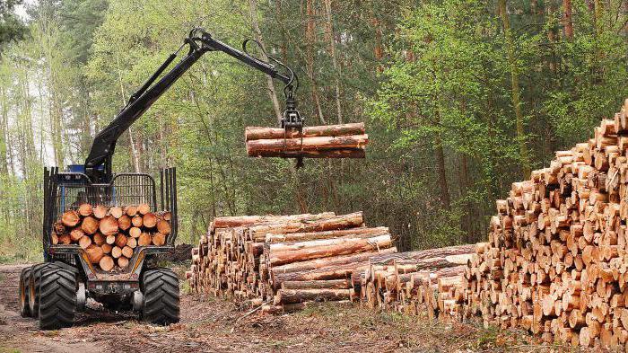 штраф за вырубку дерева на своем участке