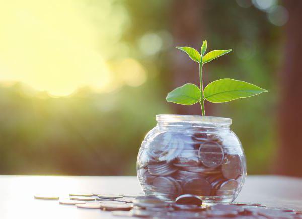 основные и оборотные фонды