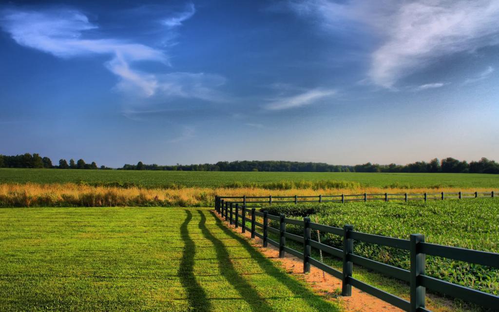 назначение сельскохозяйственных угодий