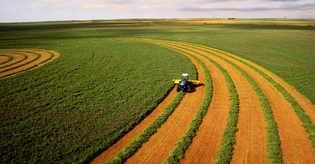 виды сельскохозяйственных угодий